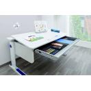 Нужные аксессуары для письменных столов moll
