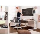 Письменные столы moll - красота, эргономичность, здоровье